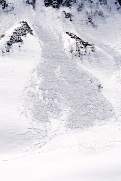 Avalanches in freeride